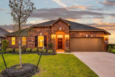 Pearland Single Family Home For Sale: 13911 Water Lily Falls