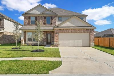 Manvel Single Family Home For Sale: 16 Alyssa Palms Drive