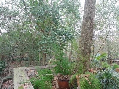 Houston Single Family Home For Sale: 9615 Bayou Brook Street