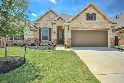 Katy Single Family Home For Sale: 6818 Abilene Drive