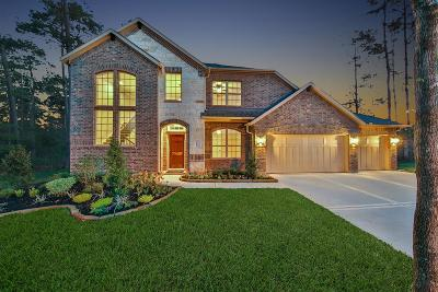 Conroe Single Family Home For Sale: 11002 Oak Cliff Court
