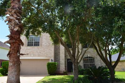 Sugar Land Single Family Home For Sale: 2606 Willow Springs Lane