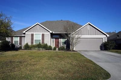 Tomball Single Family Home For Sale: 22218 Stonebridge Crossing Lane