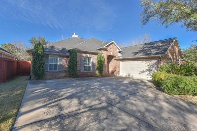 Single Family Home For Sale: 12402 Sandia Cove Court