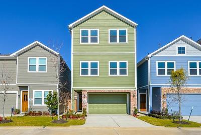 Houston Single Family Home For Sale: 5431 Holguin Hollow Street