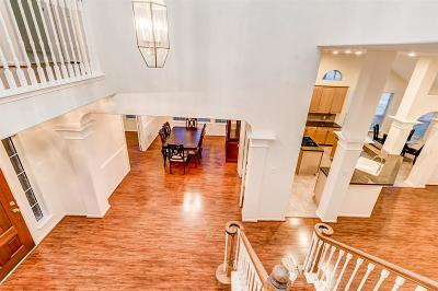 Houston Single Family Home For Sale: 11803 Canyon Mills Drive