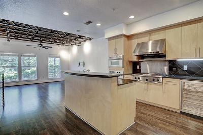 Houston Condo/Townhouse For Sale: 1626 Elgin Street #6