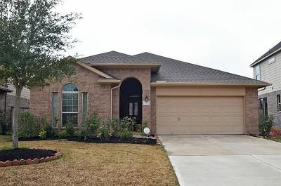 Fulshear Single Family Home For Sale: 27523 Huggins Crest Court