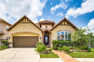 Sugar Land Single Family Home For Sale: 25 Silent Way Drive