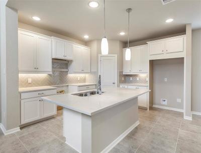 Katy Single Family Home For Sale: 23202 Teton Glen Lane