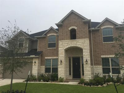 Katy Single Family Home For Sale: 1807 Bridge Gate Lane