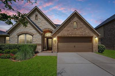 Katy Single Family Home For Sale: 2814 McDonough Way