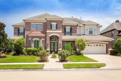 Sugar Land Single Family Home For Sale: 419 Ogden Trail
