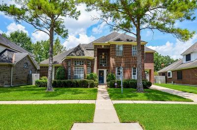 Sugar Land Single Family Home For Sale: 143 Shadow Wood Drive