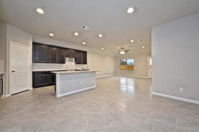 Rosenberg Single Family Home For Sale: 6402 Indigo Cliff Drive