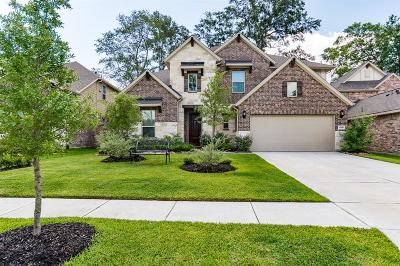 New Caney Single Family Home For Sale: 23458 Fauburg Drive