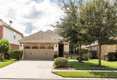Cinco Ranch Single Family Home For Sale: 24515 Foxberry Glen Lane