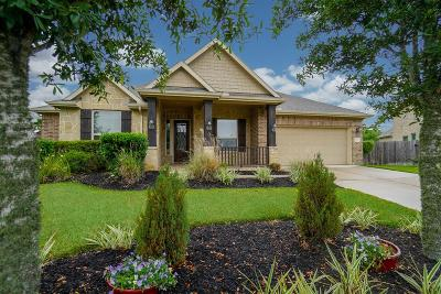 Katy Single Family Home For Sale: 2122 Summer Gardens Lane
