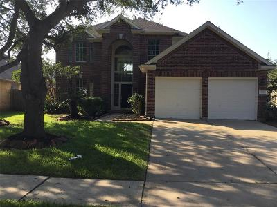 League City Single Family Home For Sale: 3217 White Sands Way