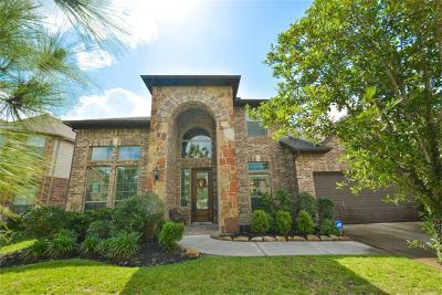Houston Single Family Home For Sale: 13814 Palmer Glen Lane