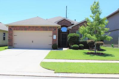 Saddlebrook, Saddlebrook Village, Saddlebrook Ranch Single Family Home For Sale: 25431 Dappled Filly Drive