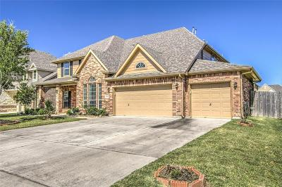 Houston Single Family Home For Sale: 10007 Wolheb Way
