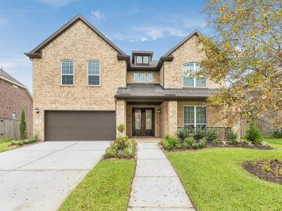 Pearland Single Family Home For Sale: 7427 Woodward Springs Drive