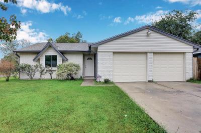 Houston Single Family Home For Sale: 4729 E Ridge Creek Drive