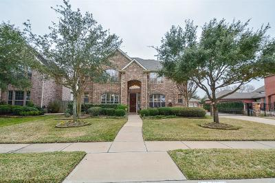 Houston Single Family Home For Sale: 8707 Hollow Banks Lane