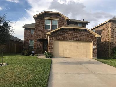Katy Single Family Home For Sale: 20838 Morgan Knoll Lane