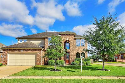 Pearland Single Family Home For Sale: 12801 Shady Springs Drive
