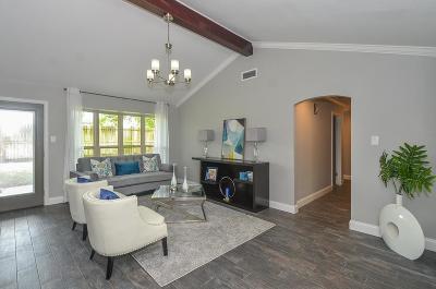 Houston Single Family Home For Sale: 867 Carlingford Lane