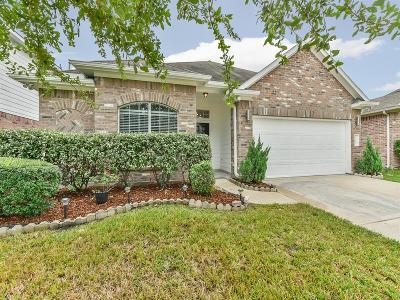 Houston Single Family Home For Sale: 21019 Kirkland Woods Drive