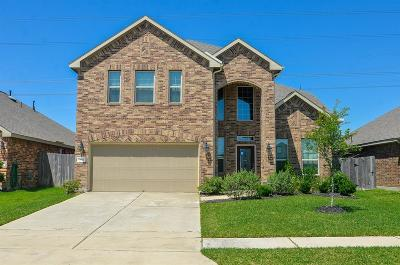 Katy Single Family Home For Sale: 3611 Cactus Field Lane