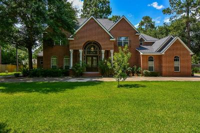 Tomball Single Family Home For Sale: 20819 Highet Place