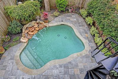 Houston Single Family Home For Sale: 709 Asbury Street