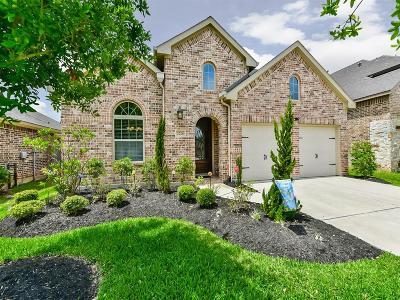 Katy Single Family Home For Sale: 2226 Falcon Brook Drive