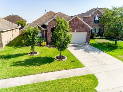 Single Family Home For Sale: 8923 Headstall Drive