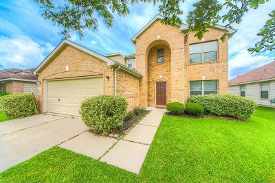 Houston Single Family Home For Sale: 19507 Remington Cross Drive