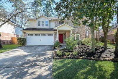 The Woodlands Single Family Home For Sale: 10 S Misty Canyon Place