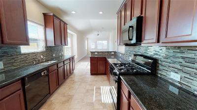 Texas City Single Family Home For Sale: 2205 Del Mar Drive