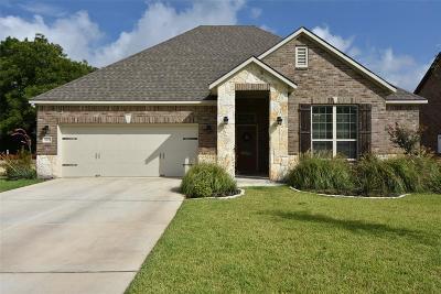 Washington County Single Family Home For Sale: 1803 Basin Trail