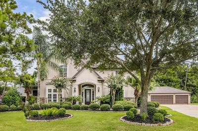 Pearland Single Family Home For Sale: 3620 Pine Chase Drive