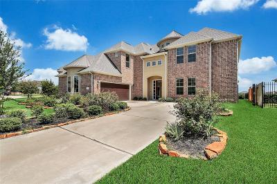 Hockley Single Family Home For Sale: 32011 Cary Douglas Drive