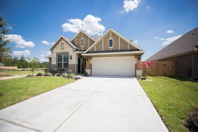 New Caney Single Family Home For Sale: 18831 Palmetto Hills Drive