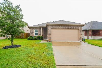 Rosenberg Single Family Home For Sale: 2203 Hackberry Bank Lane