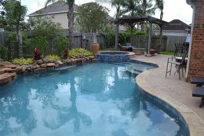 League City Single Family Home For Sale: 606 Ivory Stone Ln Lane