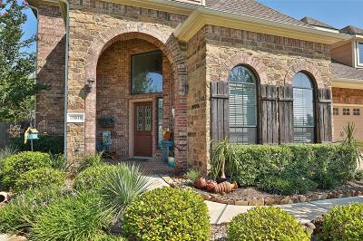 Tomball Single Family Home For Sale: 11010 Arthurian Dream Court