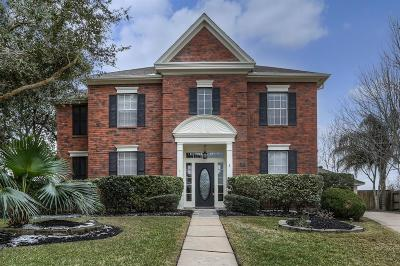 Sugar Land Single Family Home For Sale: 1107 Ferndale Court