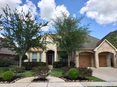 Sugar Land Single Family Home For Sale: 707 Doscher Lane